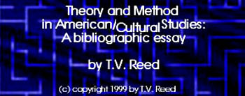 theory and method in american/cultural studies a bibliographic essay